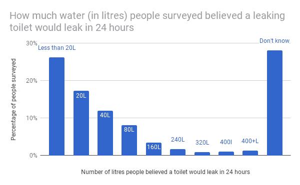Leaky Loo Survey